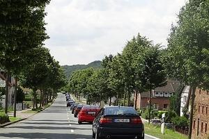 rinteln_21-24-06-2012_19_20120702_1673523482